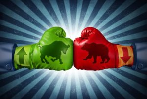 bear market vs bull market